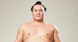 相撲取りDB